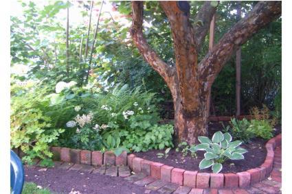 apfelbaumunterpflanzung mein sch ner garten forum. Black Bedroom Furniture Sets. Home Design Ideas